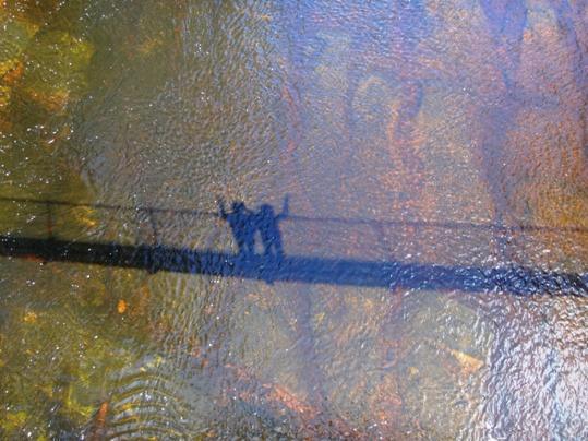 A Huon folyó barnás vize