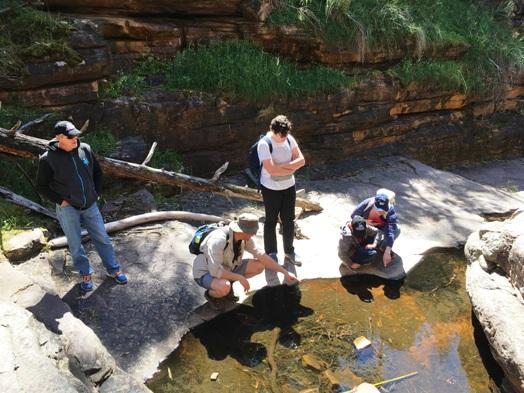 Aligátor-hasadék, ebihalnézőben