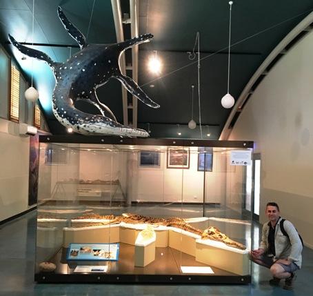 fossziliak13